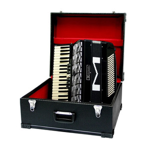 Acordeon Sanfona Michael 120 Baixos 9 Registros C/ Case+bag