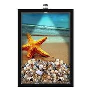 Quadro Led Caixa  30x40  Conchas Estrela Do Mar 02