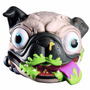 Cachorro Bulldog Frances Con Certificado De Adopcion Nuevo