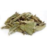 Chá Assa Peixe (granel 100gr)