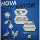Incubadora Hova-bator Para Huevos De Gallina