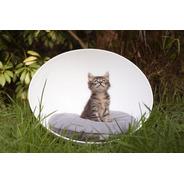 Bubble Moon Para Mascotas Pequeñas