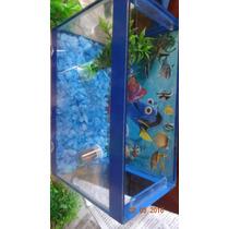 Peixe Beta Com Aquario Completo Consulte Antes Da Compra !!!