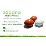 Huevos Falsos (plastico) Para Gallinas