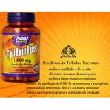 Tribulus Terrestris 1000mg - 90 Cap. Importado