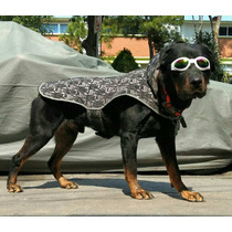 Lentes Googles Para Perro Mediano Grande Pitbull French Etc