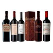 Vinos Premium Rutini Escorihuela Bianchi Trumpeter + Estuche