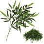 Bambus 12 Galhos - Kits Bamboo Plantas Artificiais Arvores