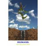 Hidrogel Agrícola - Polímero Absorbente De Agua Xilemagel