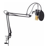 Microfono Kit Completo Condensador Estudio Podcast Youtube