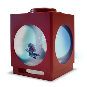 Acuario Pecera Betera Proyector Rojo1.8 Litros 22x16x16cm