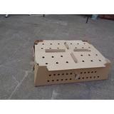 Caja De Carton Para Transporte De Pollitos Bb.