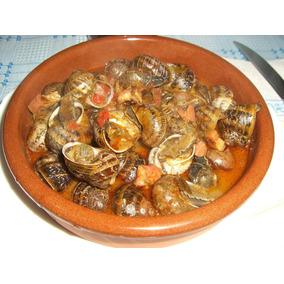 Caracol Caracoles Vivo Gourmet Surtimos Restaurantes Envios