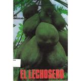 El Lechosero ( Lechoza ) - Luis Avilán Y C. Rengifo (nuevo