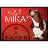 Croquetas Mira Adulto De Bayer 20 Kg - Envío Gratis