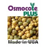 Osmocote 15-09-12 Plus Adubo Fertilizante (5 A 6) Meses 1 Kg