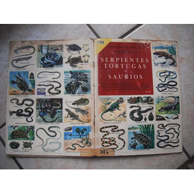 Un Libro De Oro De Estampas De Serpientes De 1980 Edit.nova