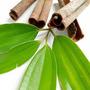 Aceite Esencial De Canela, Reumatismo, Circulacion