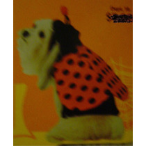 Disfraz De Mariquita Talla S Para Mascotas: Perros & Gatos