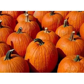 Calabaza De Casco Naranja Tipo Hallowen Promo Envio