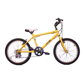 Bicicleta Canaglia Mtb R20 5v // Envío Gratis.