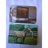 2 Calendarios De Bolso Metro Rj E Cavalo 1981