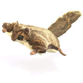 Ardilla Voladora Mascota