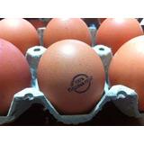 Huevos Criollos De Gallina Feliz Aa - Bandeja 30 Un.