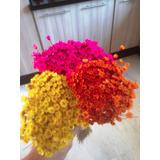 Flor Sempre Viva Pacote Maço Enfeite Cores Decoração