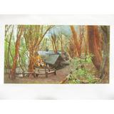 El Arcon Tarjeta Postal Foto De Parque Nacional Nahuel Huapi