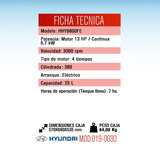 Grupo Electrógeno Generador Gasolina 13 Hp Hyundai Hhy6800fe