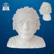 Busto Albert Einstein 3d Para Pintar