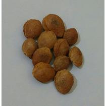 Sementes De Damasco-vitamina B17- 500gr (caroço)
