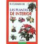 Las Plantas De Interior (pequeñas Joyas); Equipo Susaeta