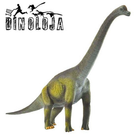 Dinossauro Braquiossauro Collecta Importado Miniatura