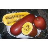 Melão Croá Vermelho -10 Sementes