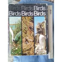 Libro Antiguo De Aves, En Inglés, Bellamente Ilustrado