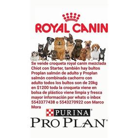 Croquetas En Bulto De 20kg Royal Canin Excelente Precio