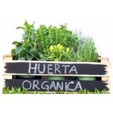 Mi Casa, Mi Huerta (técnicas De Agricultura Urbana)