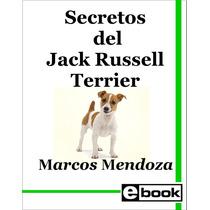 Jack Russell Terrier - Libro Entrenamiento Cachorro Adulto