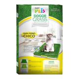 Pasto Sintético Chico Para Perro Fancy Pets Alfombra Tapete