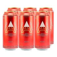 Andes Origen Roja . Cerveza . 473ml X 6 - Tomate Algo® -