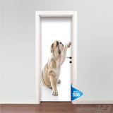 Adesivo Porta Cachorro Gato Petshop York Veterinaria Vet