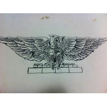 Dibujo Tinta China Aguila Nacional De Monte Negro