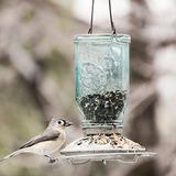 Perky-pet Mason Jar Alimentador De Aves Salvaje