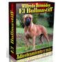 Libro Electrónico El Bullmastiff Adiestramiento Y Más