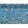 Paez Vilaro, Carlos - Punta Del Este... Desde Mi Catalejo