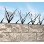 Pinches De Seguridad Perimetral Proteccion Muros Puas Puntas
