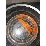 Procambarus Clarkii Naranja
