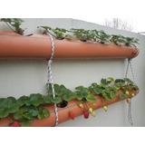 Huerta Vertical - Macetero Colgante 2 Pisos Para 10 Plantas